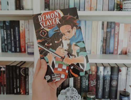 Demon Slayer Rezension