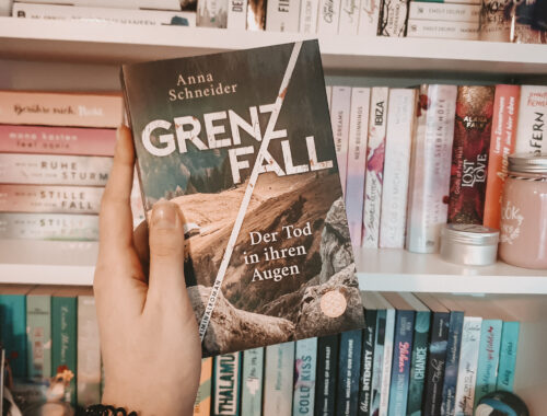 Grenzfall Rezension