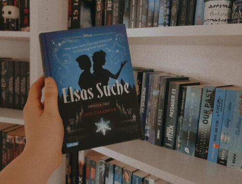 Elsas Suche Reze nsion